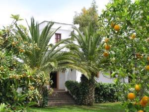 Taray Botánico
