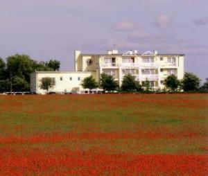 Hotel am Krebssee