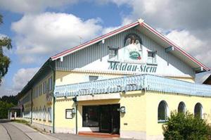Steinbüchler Moldaustern