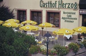 Hotel Gasthof Herzog